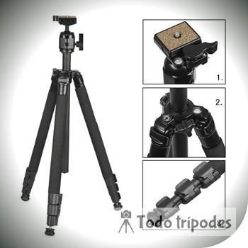 Que Tripode Canon M50